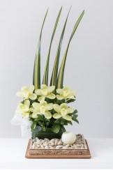 China Cuadrada Corcho Zen Orquidea Recta 2 Niveles y Velon