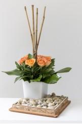 Zen Corcho Pantalla Rosa Plana y Bambu