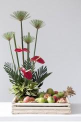 Azafata Frutas y Anturios