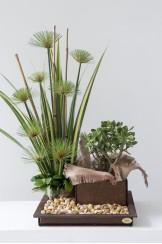 Portamatero Zen Bonsai